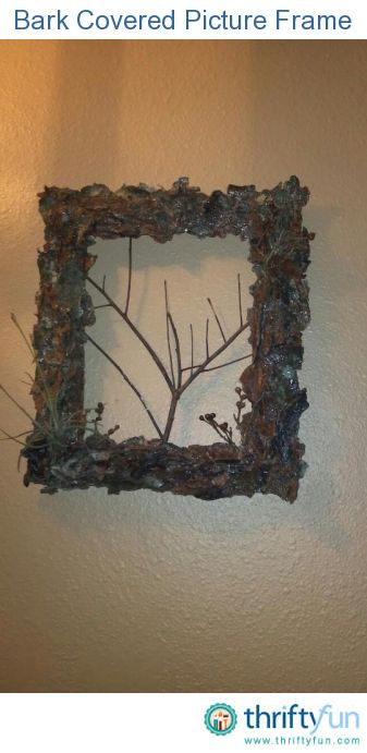 Making A Bark Covered Picture Frame Craft Projects Pinterest