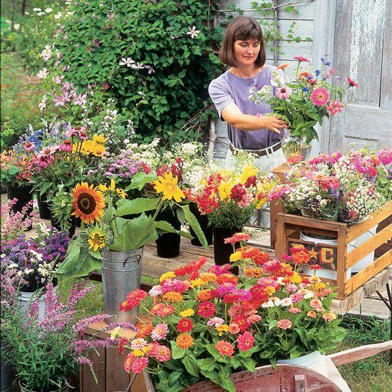 Grow Flowers For Profit Organic Gardening Flower Farm Farming And Flowers