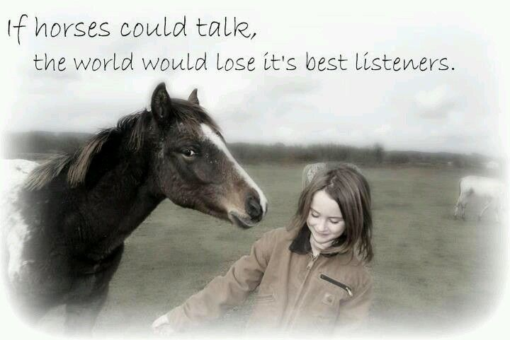 Horses are one of the best species that listen;)