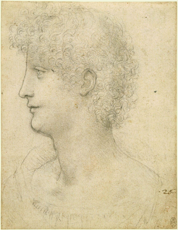 Leonardo da Vinci - Head and Shoulders of a Youth in Profile (Salai ...