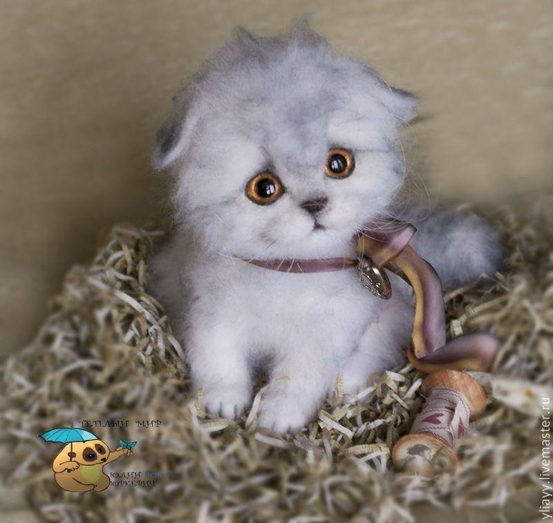 Купить котенок Тимоша - игрушка ручной работы, игрушка, кот, коты, котик, котенок