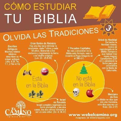 Blog Sobre Hebreo Bíblico Paleo Hebreo Estudio Bíblico Verso A Verso De Qué Trata La Biblia Quién Es Israel Y Much Estudiar La Biblia Biblia Como Estudiar