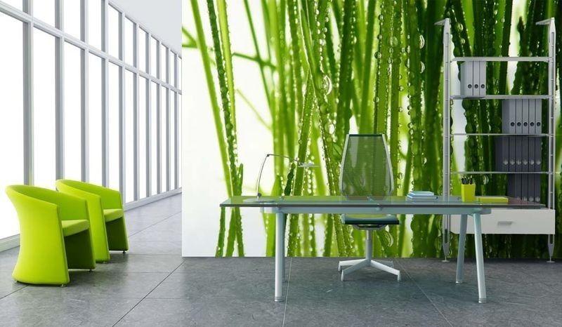 Parete Verde Ufficio : Arredamento ufficio moderno parete ufficio verde natura green office
