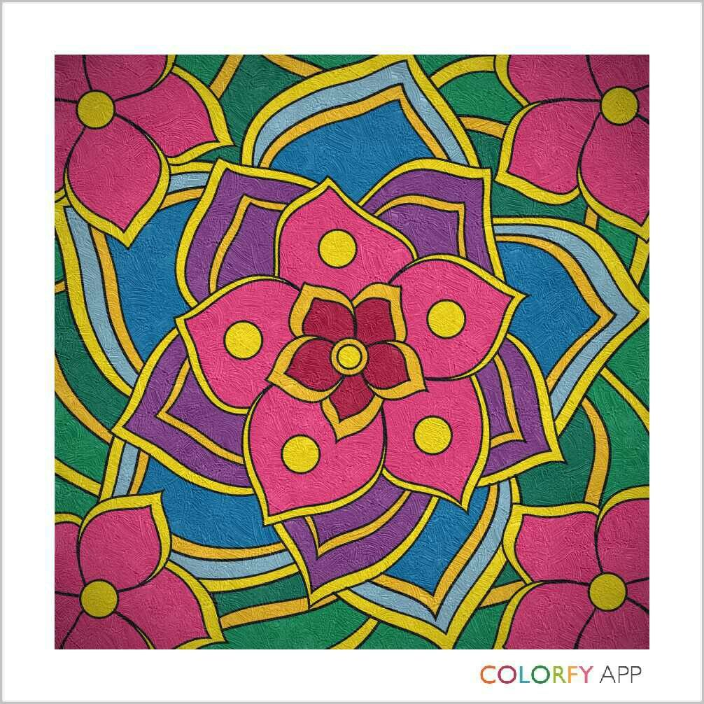 Colorfy Flowers