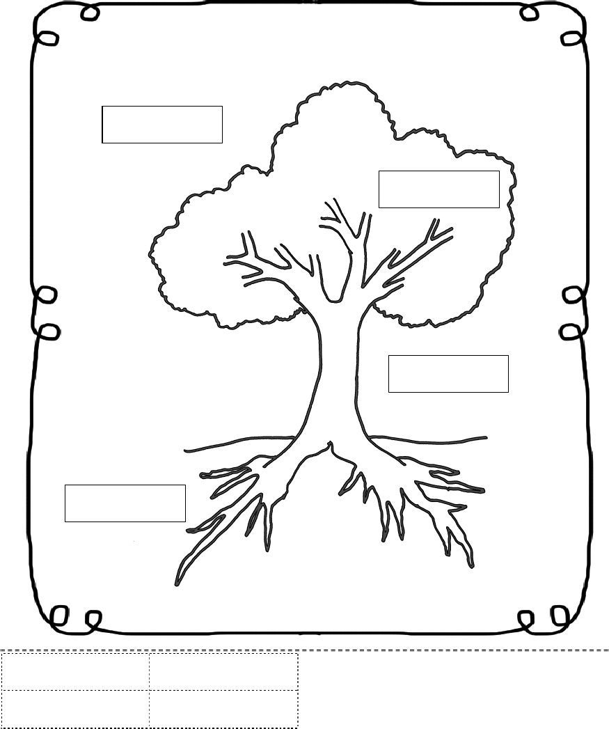 parts of a tree worksheet trees school theme pinterest worksheets school and montessori. Black Bedroom Furniture Sets. Home Design Ideas