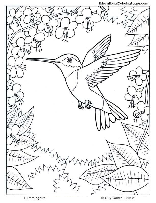 Simple Ideas coloring page nature