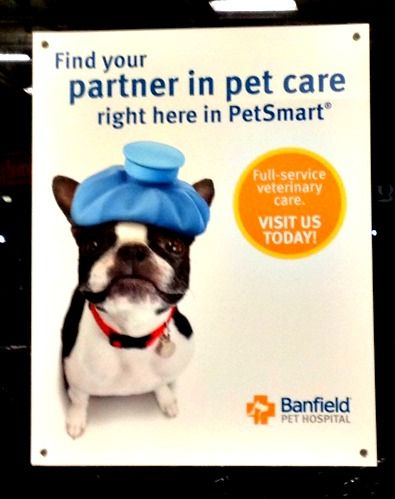 By Having A Banfield Pet Hospital Inside Stores Petsmart Is Providing Convenience To Their Customers They Pet Adoption Center Animal Hospital Veterinary Care