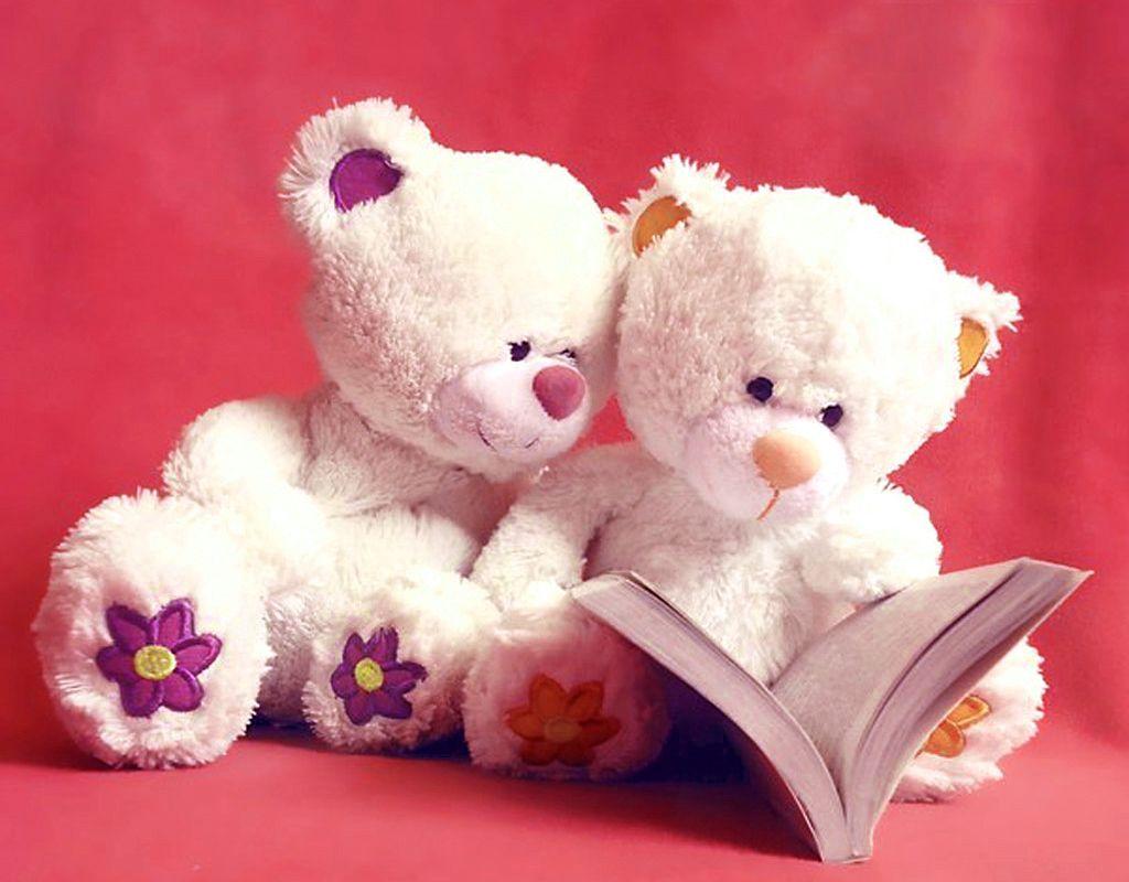Cute Teddy Bear Reading Pink Wallpaper Teddy Bear Images Teddy