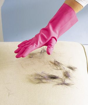 Rubber Glove as Pet Hair Remover  Put on a damp rubber dishwashing glove and run your hand over hair-covered upholstery—the hair will cling to the glove, not the sofa. Rinse off the glove in the sink (with the drain catcher in place, of course).
