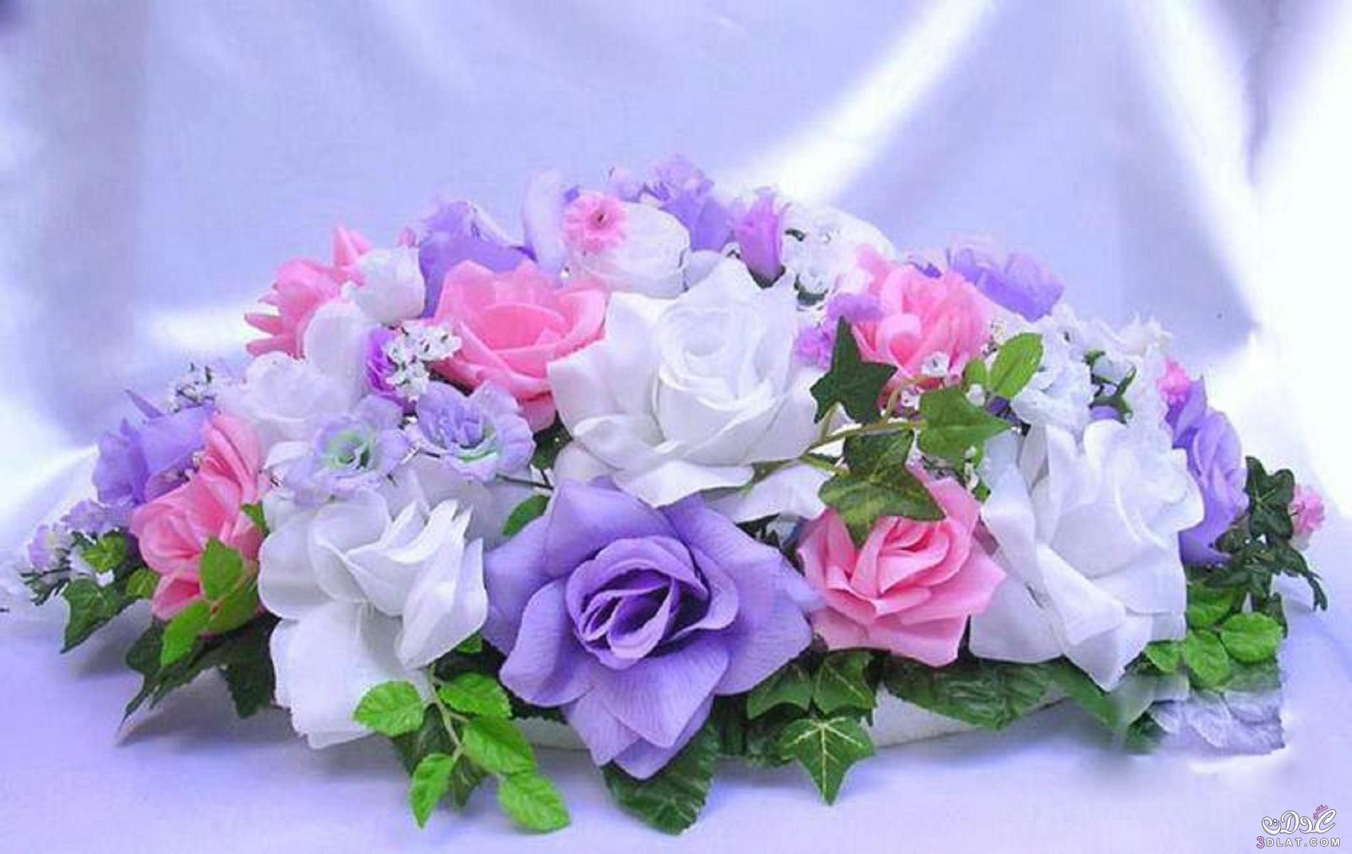 اروع خلفيات ورود 2019 صور ورود رومانسية تحفة 2019 صور زهور مميزة 2019 Birthday Flowers Bouquet Flower Bouquet Delivery Online Flower Delivery