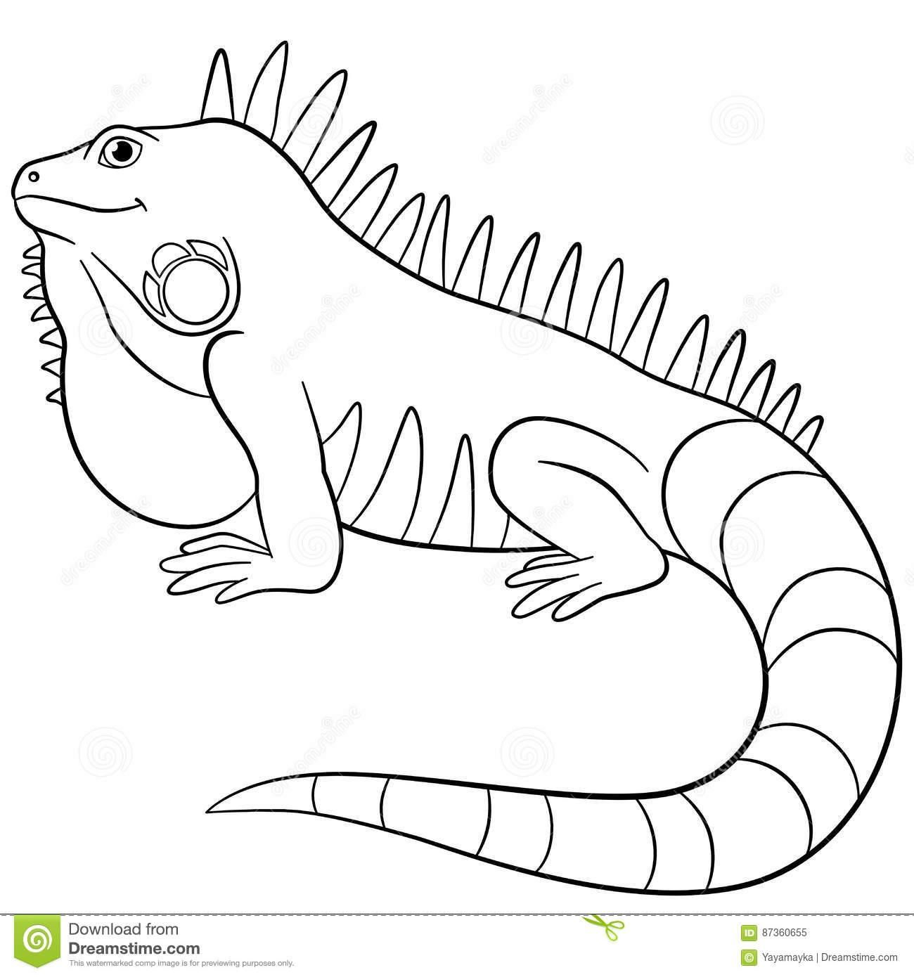 18 Coloring Page Iguana Coloring Pages Coloring Books Online Coloring Pages