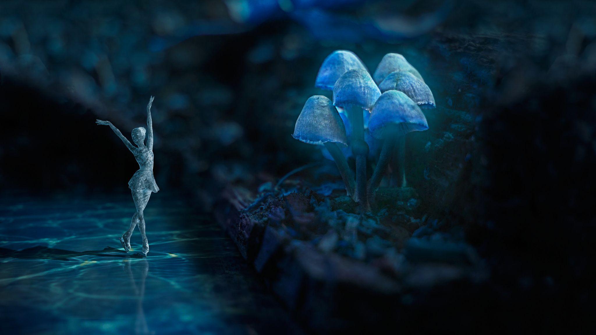 Little Ice Princess - null