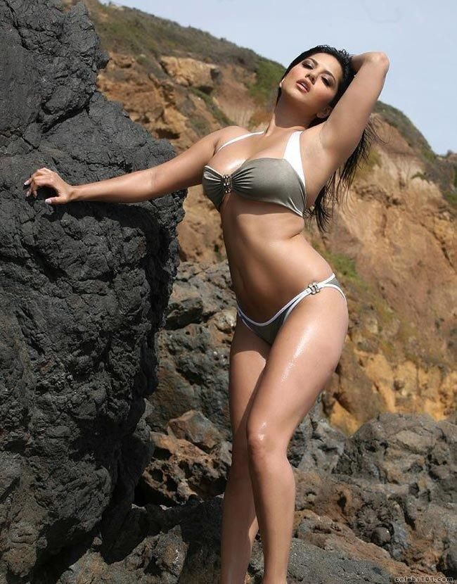 Sexy Sunnyleone Hot And Sexy Curvebody View Full Image At