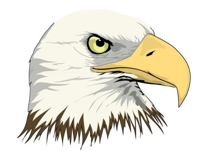pin by kenda davis the sequel on soar like an eagle pinterest rh pinterest com bald eagle vector art free bald eagle vector black and white