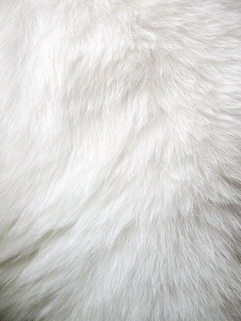 White Fur Tons De Branco Paraisos