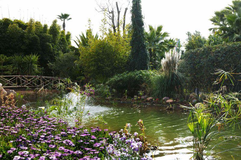 Reise Marrakesch Anima Andre Hellers Paradiesischer Garten