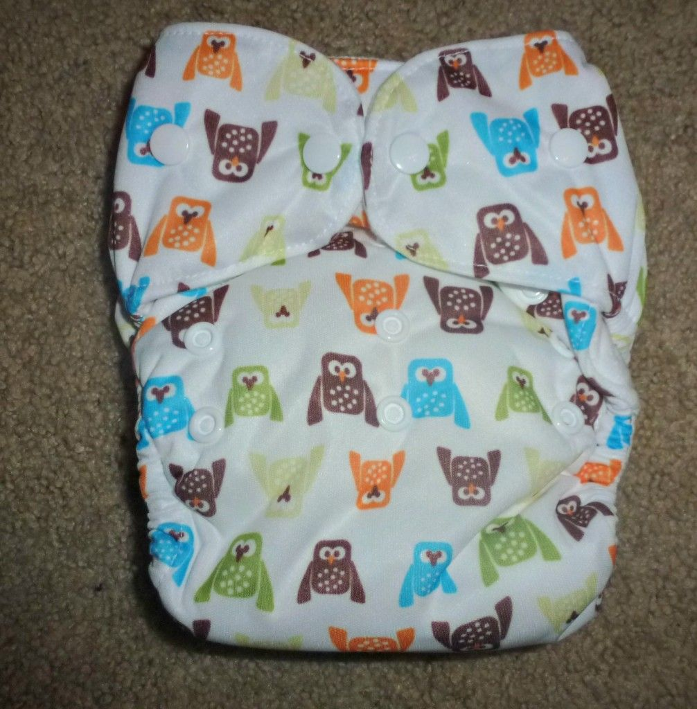 Thirsties Duo All in One Cloth Diaper from Thanks Mama