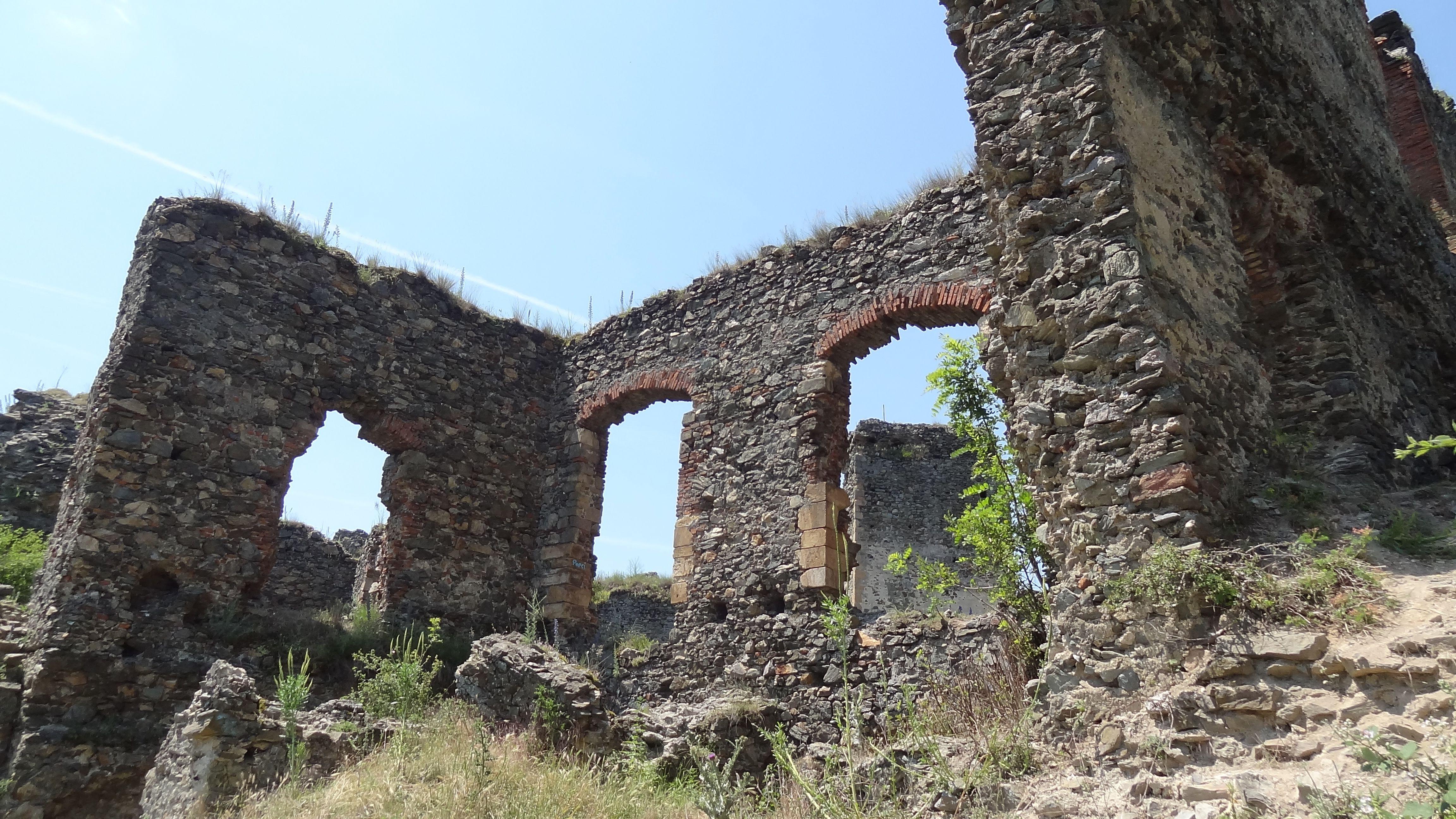 Cetatea Soimos