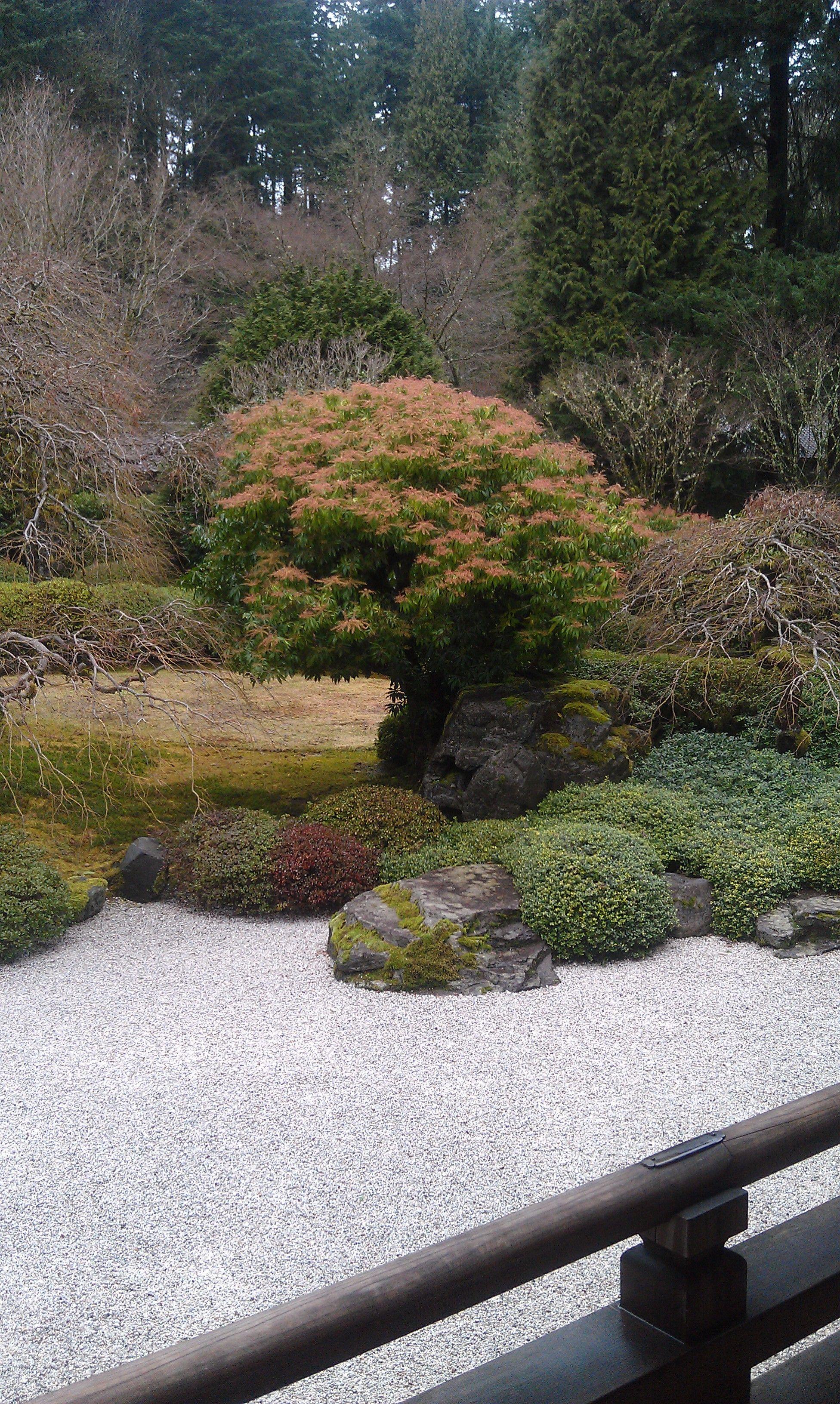 Portland Japanese Garden, Winter