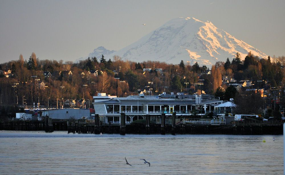 Saltys Alki Beach Seattle Wa Restaurant With Good Food And A