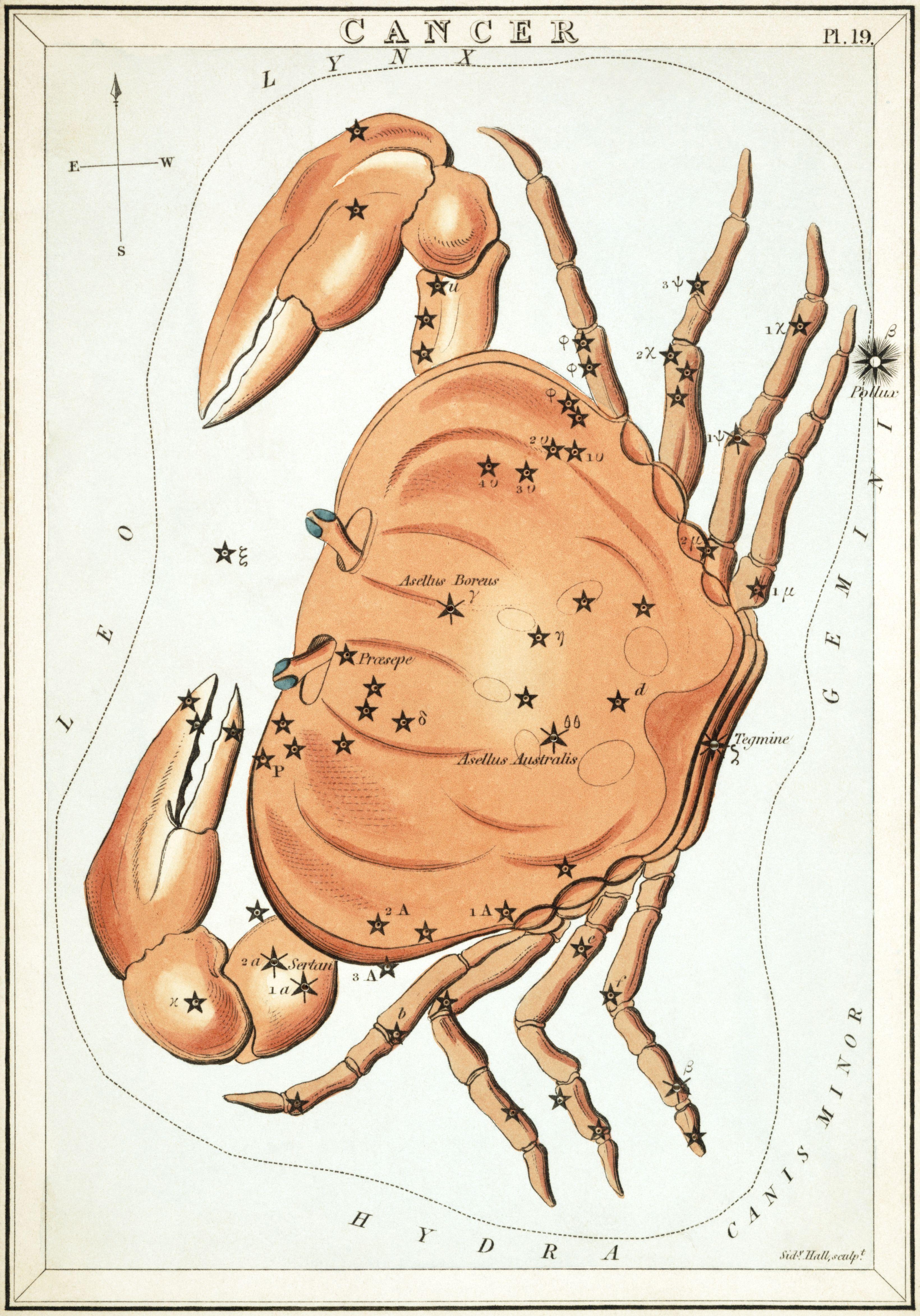 Cancer Zodiac Sign | Cancer Zodiac Sign | Pinterest | Constellation ...