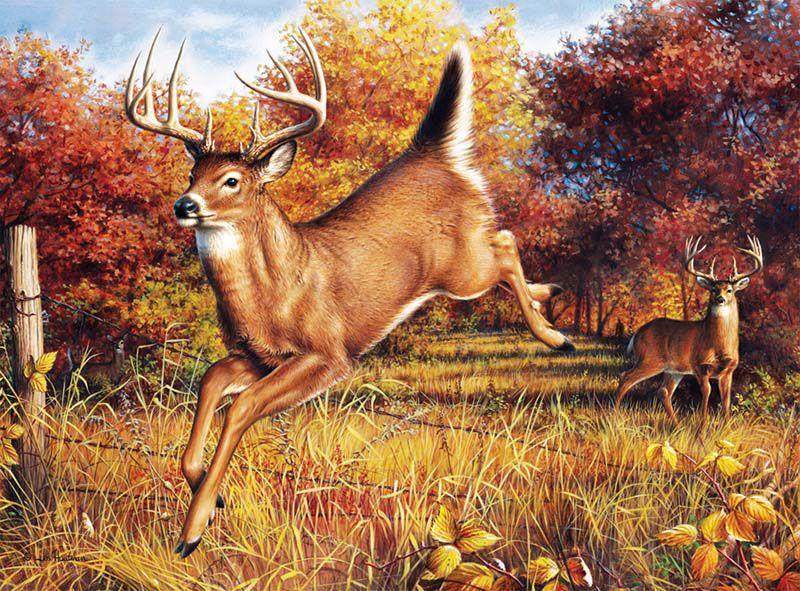 Stag Deer Amp Doe Autumn We Ll Meet Again By Hautman