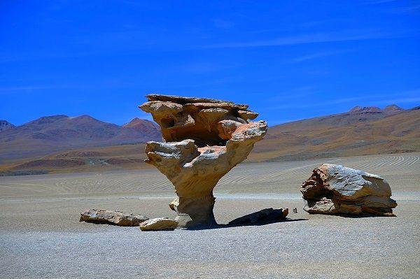 Baum aus Stein 2 wurde in Bolivien aufgenommen
