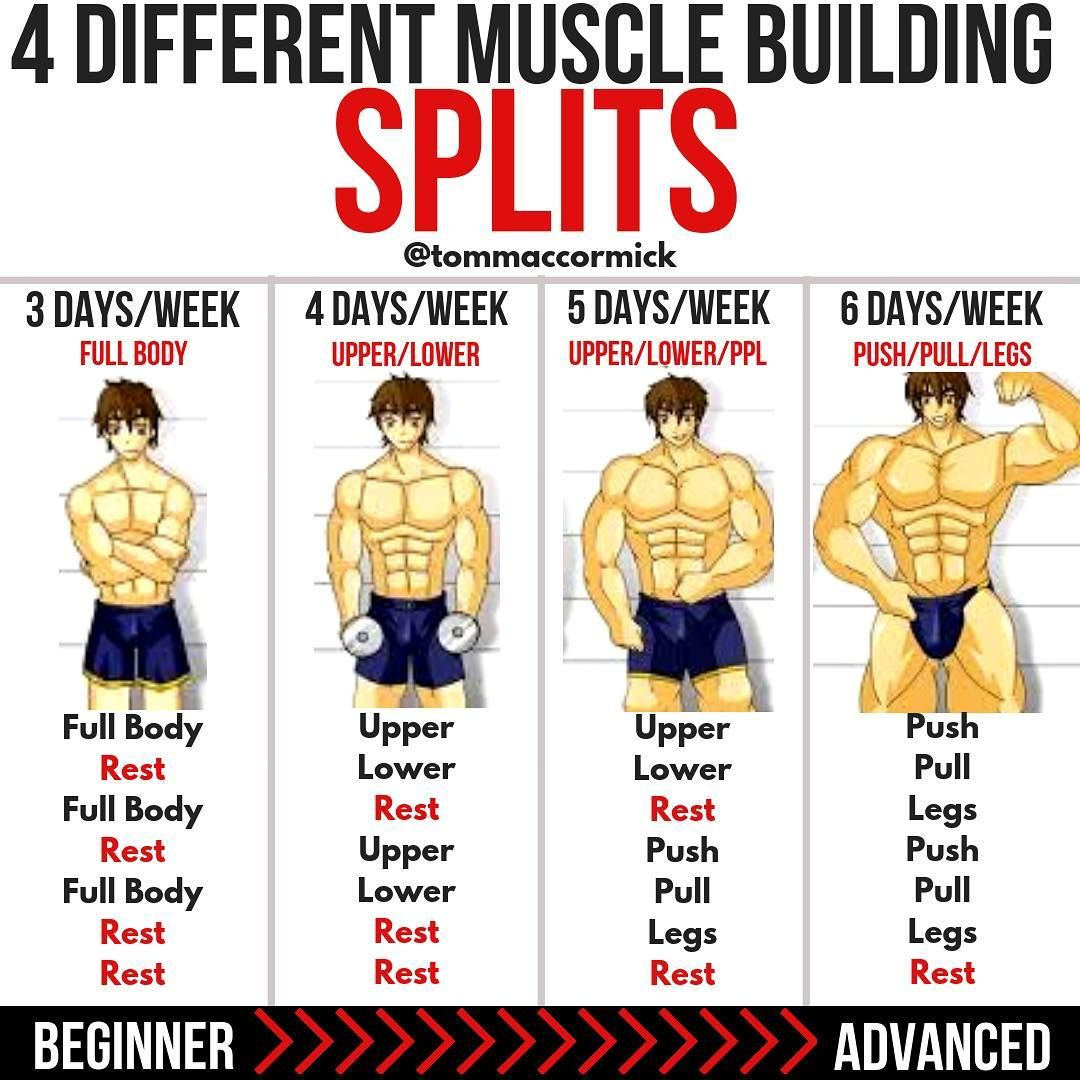 8 Powerful Muscle Building Gym Training Splits | fitness