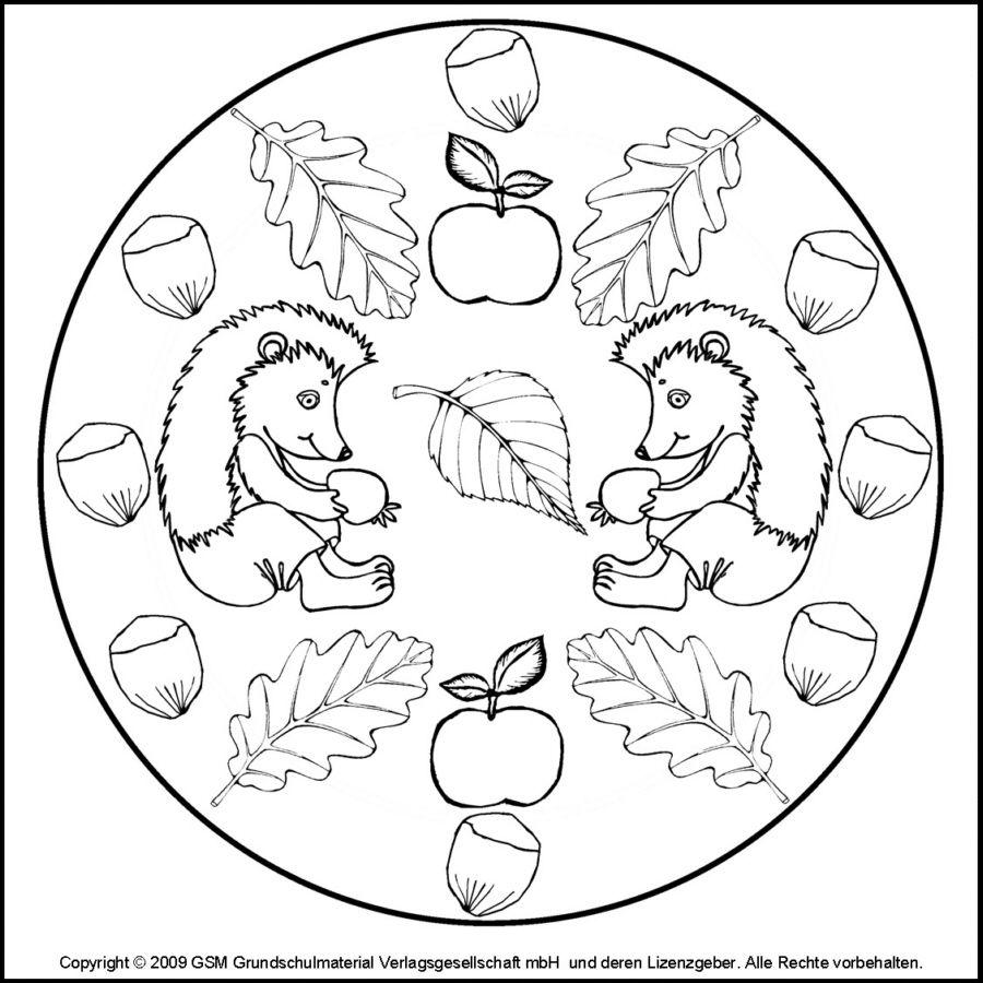 Mandala: Egels en herfstfruit | * HERFST: egels kleurplaten! | Pinterest