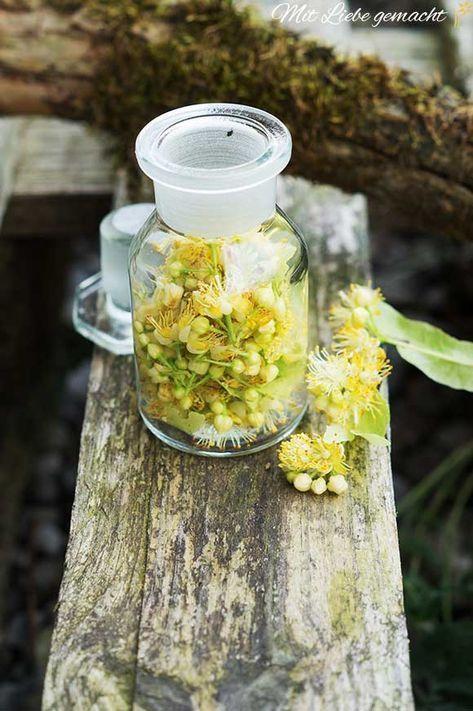 Lindenblüten in der Kosmetik – feine Produkte für die Schönheit