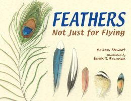 Feathers: Not Just for Flying - 16 birds and some very practical uses of feathers
