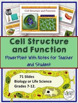 cell organelles structure and function powerpoint and notes - Tabla Periodica Jpg