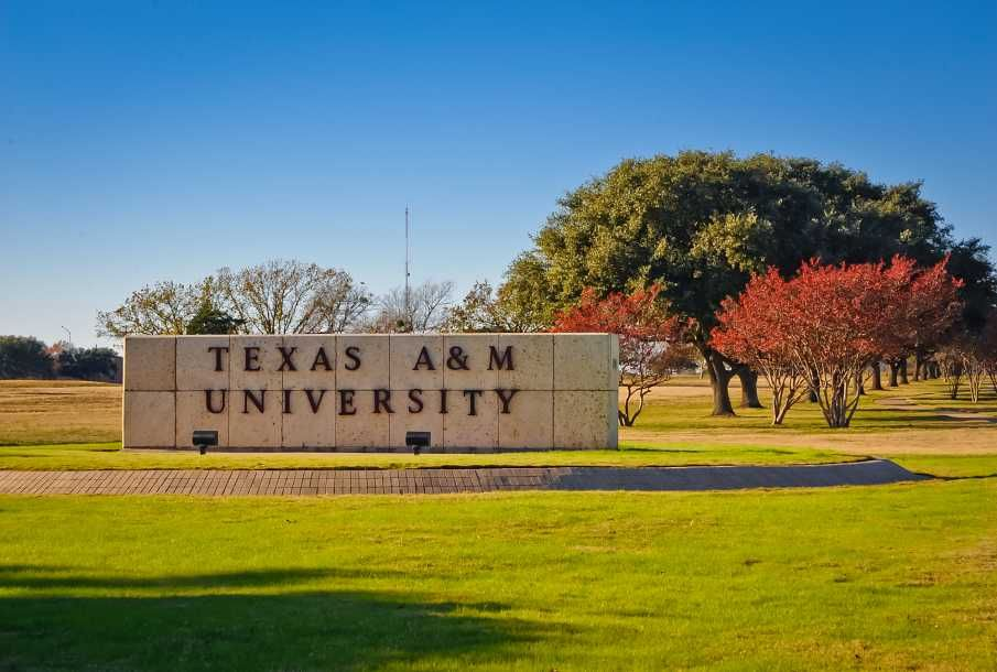 Tamu Virtual Walking Tour Texas A M University Texas A M College College Station Texas