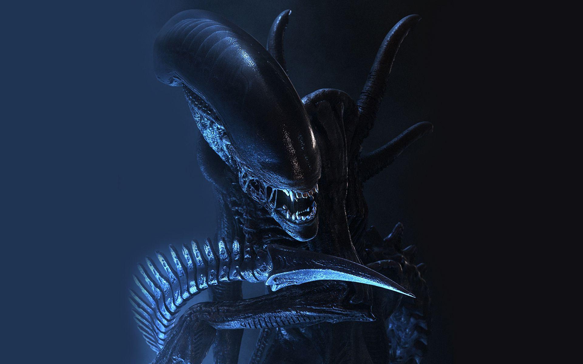 A Mean Looking Xenomorph From Alien 2 Xenomorph Giger Alien Aliens Movie