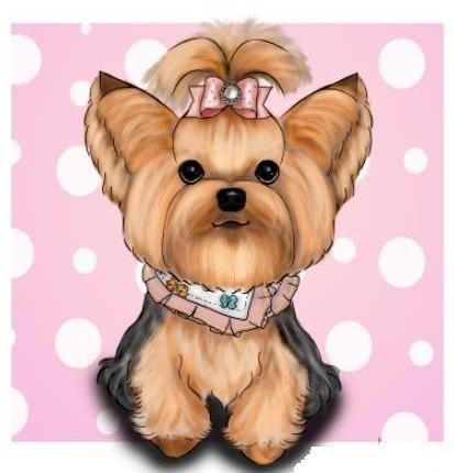 The most precious dogs 💕 Yorkshire terrier dog, Teacup