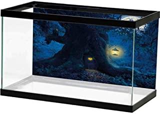 Amazon Com Virtual Live Fish Aquarium Pet Supplies Aquarium Fish Pet Supplies Aquarium