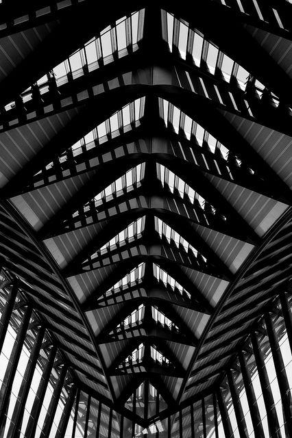 Gare De Saint Exupery Tgv Saints Architecture And Patterns