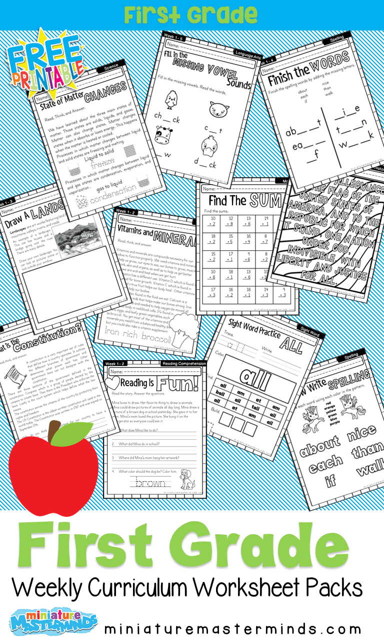 small resolution of Free Printable First Grade Curriculum Book   First grade curriculum
