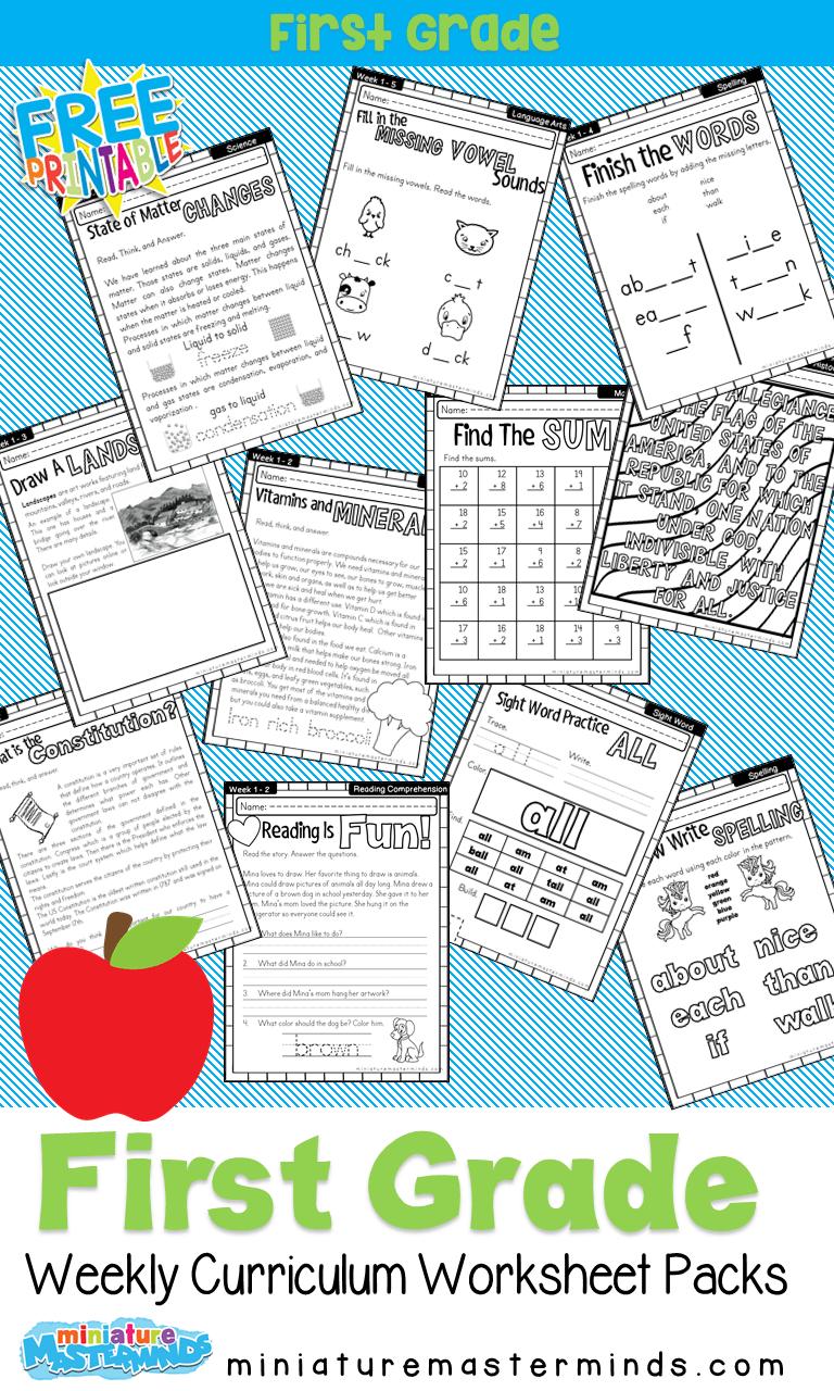 medium resolution of Free Printable First Grade Curriculum Book   First grade curriculum