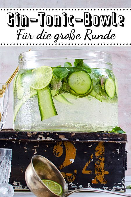 Wer Gin Tonic mag, wird dieses Rezept lieben! #Gin #Tonic #Bowle #alcoholicpartydrinks