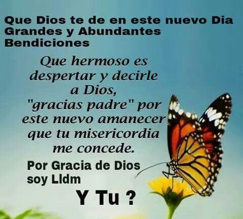Por Gracia De Dios Soy Lldm Gracias Dios Frases Agradecimiento A Dios Frases Bonitas