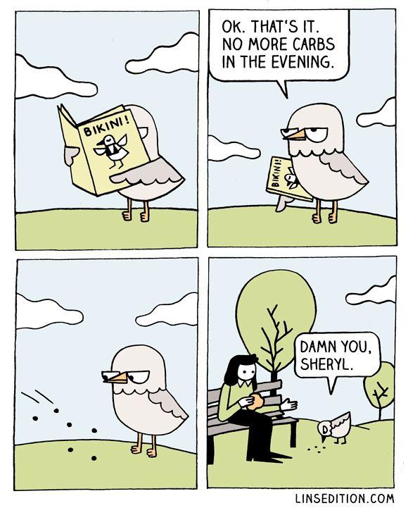 Summertime Meme : summertime, Summertime, Humor, Comics,, Funny, Cartoons,, Punny, Jokes