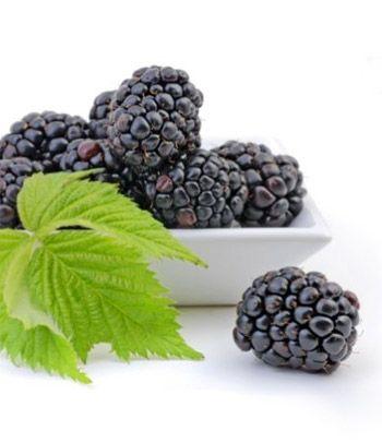 Health Benefits Of Blackberries Comida Funcional Frutas