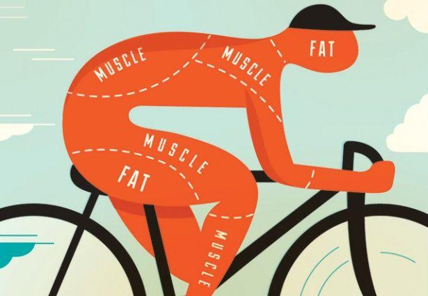 sugar free diet fat loss