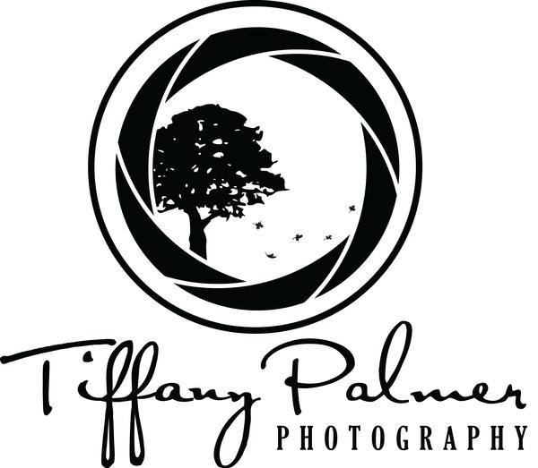 Coleção de logotipos de fotografia   Logos, Photography logos and ...