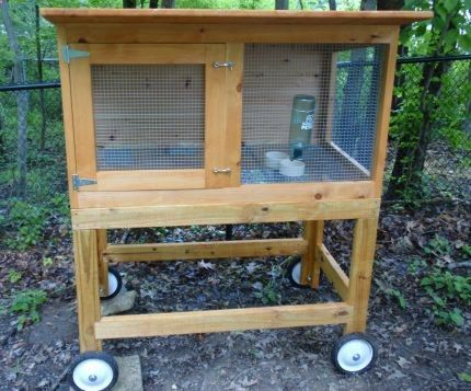 Eastern white cedar rabbit hutch on mobile stand of pressure treated 2x4s. Wheels were salvaged from kids old wagon.Click To Enlarge