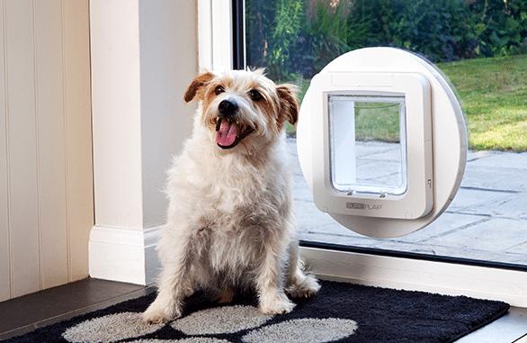 The Best Electronic Dog Doors for 2018 Smart dog door