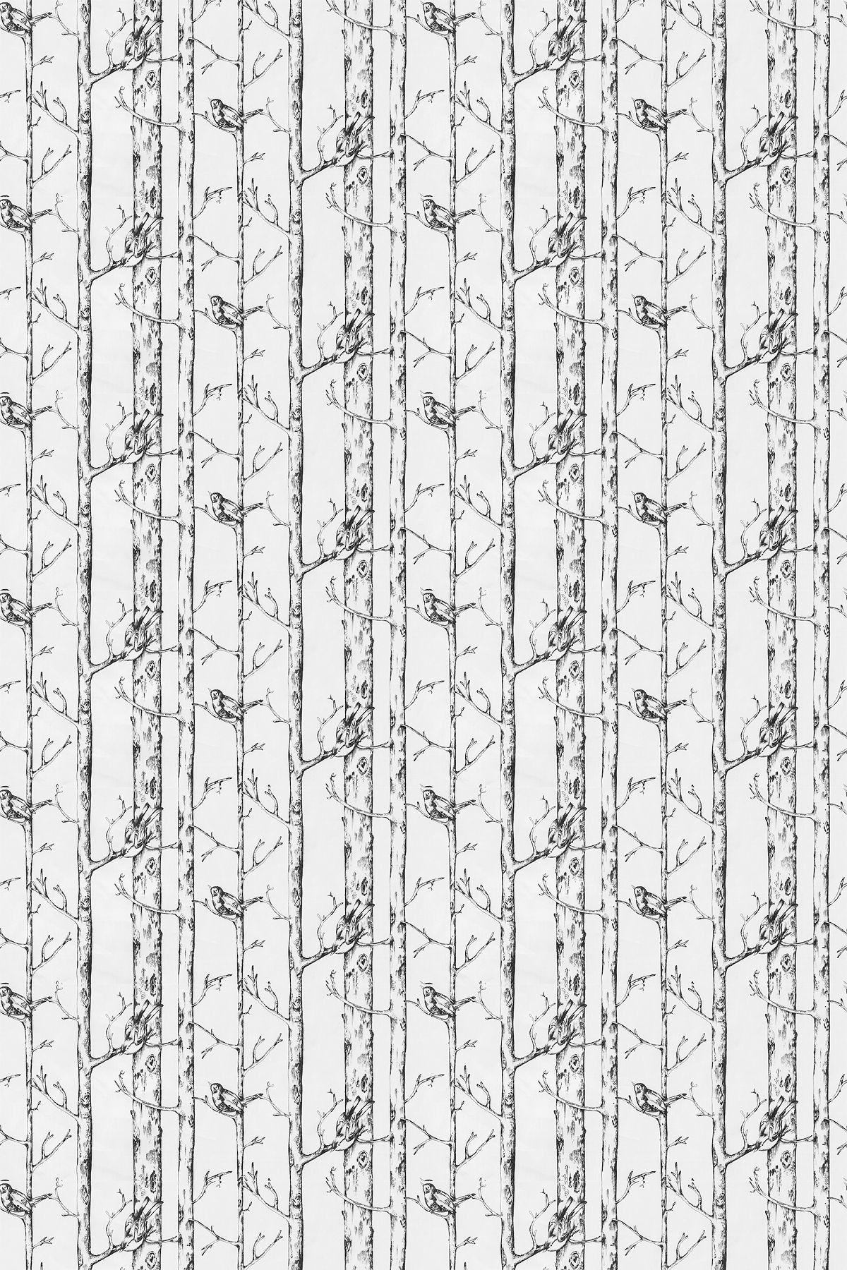 Jenny Wren (5847/912) Prestigious Fabrics Slender