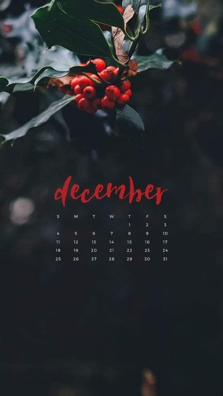 #decembrefondecran in 2020 | December wallpaper, Wallpaper ...