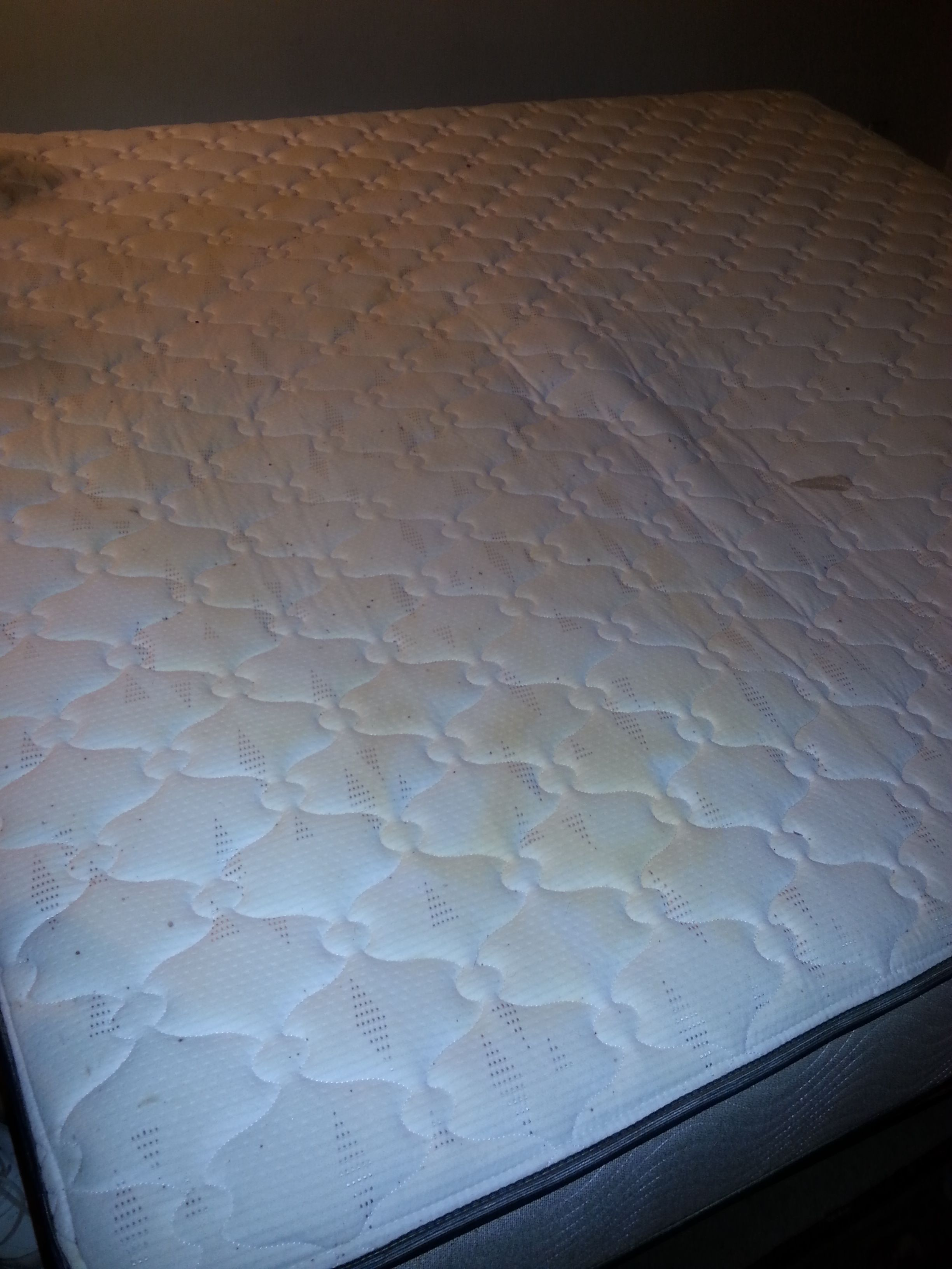 Junk Bed Bug Mattress Removal Hauling Service In Omaha Ne Excel